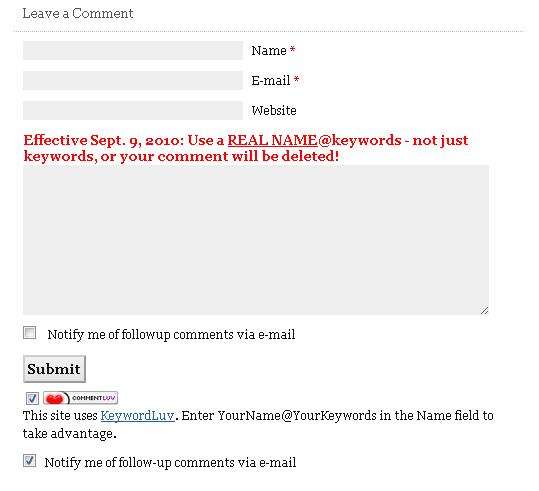 Поле комментириев на зарубежном DoFollow блоге.